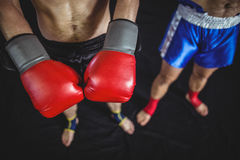 Boxer with boxing gloves Royalty Free Stock Photography