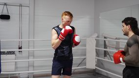 Boxer in boxing gloves training attack with partner in sport club. Boxer man training punches with personal coach in. Boxing club. Fight exercise in gym stock video footage