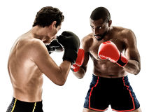Boxer boxing men isolated people Stock Photos