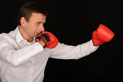 Boxer Businessman Royalty Free Stock Photos