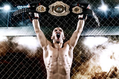 Boxer with Champion belt celebrating flawless victory in boxing cage. Background with lights and smoke. Copy Space Stock Photos