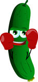 Boxer cucumber or pickle Stock Images