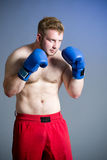Boxer on dark background Royalty Free Stock Photos