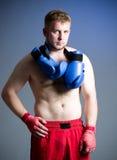boxer on dark background Stock Photo