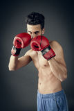 Boxer in defensive position Royalty Free Stock Images