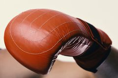 Boxer demonstrates red leather glove in close up. Athlete with box equipment isolated on white background Stock Photos