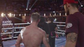 Boxer in den Handschuhhänden oben auf dem Ring, hintere Ansicht Rückseite des Kämpfers in der Boxveranstaltung stock video footage