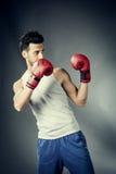 Boxer in der defensiven Stellung stockbild