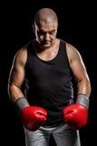 Boxer, der nach Ausfall aufwirft Lizenzfreie Stockfotografie