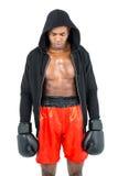 Boxer, der nach Ausfall aufwirft Stockfoto