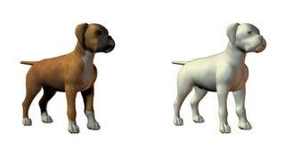 Boxer dog 3d model. Isolated on white Stock Photos