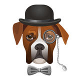 Boxer dog in bowler hat, bow and magnifier glass on eye Stock Images