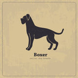 Boxer dog silhouette Stock Image