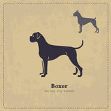 Boxer dog silhouette vintage poster Stock Photography