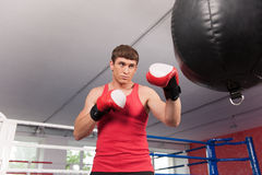Boxer doing some training on punching bag at gym. Royalty Free Stock Photography