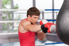 Boxer doing some training on punching bag at gym. Royalty Free Stock Image