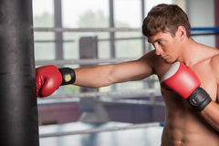 Boxer doing some training on punching bag at gym. stock photo