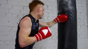 Boxer Exercise Punch Bag Sport Workout Back View. Young Caucasian Sportsman Indoor Gym Train Limber up Practice. Healthy Lifestyle Strategy Physical Activity stock video footage