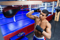 Boxer exercising with the speed bag Royalty Free Stock Photos