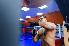 Boxer exercising with the speed bag Royalty Free Stock Image
