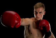 Boxer extending his right jab Royalty Free Stock Photos