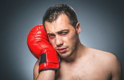 Funny beaten boxer Stock Images