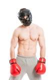 Boxer feeling dissaponted Stock Photos