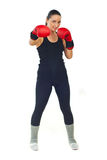 Boxer female Royalty Free Stock Photo