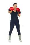 Boxer Female Royalty Free Stock Photo