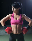 Boxer Female Royalty Free Stock Images