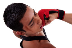 Boxer fight, punch in face Stock Photography