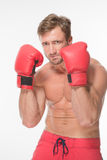 Boxer fighter in red boxing gloves Royalty Free Stock Photo