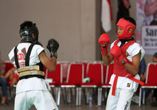 Boxer Royalty Free Stock Image