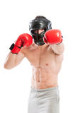 Boxer in fighting position Royalty Free Stock Photo