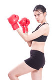 Boxer - fitness woman boxing wearing boxing gloves Royalty Free Stock Photography
