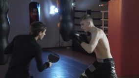 The boxer fulfills the blows along with the coach. A sports guy in boxing gloves on boxing paws, coaches a blow. The. Concept of sport, boxing, men, blows stock video