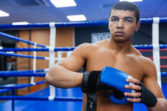 Boxer getting ready for fight Royalty Free Stock Photography