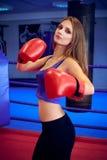 Boxer girl Stock Photo