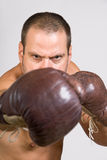 Boxer with gloves Stock Image