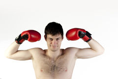 Boxer with gloves for fight Royalty Free Stock Image