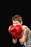 Boxer for gloves Royalty Free Stock Photography