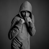 Boxer on grey background Royalty Free Stock Photography