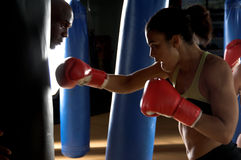 Boxer in the Gym stock photography