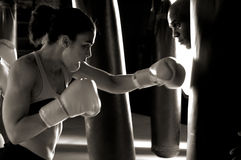 Boxer in the Gym Royalty Free Stock Photo
