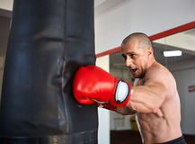 Boxer with heavy bag. Boxer working with heavy bag, left hook Royalty Free Stock Photography