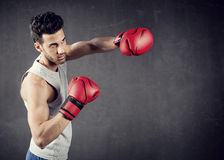 Boxer-Hintergrund stockfotos