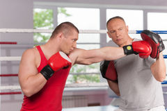 Boxer and his coach doing some sparring in ring. Royalty Free Stock Image
