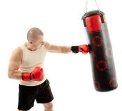 Boxer hitting the punching bag Stock Photos