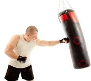 Boxer hitting the punching bag Stock Images
