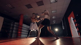 The boxer is hitting trainer with arms and legs. MMA training. stock footage